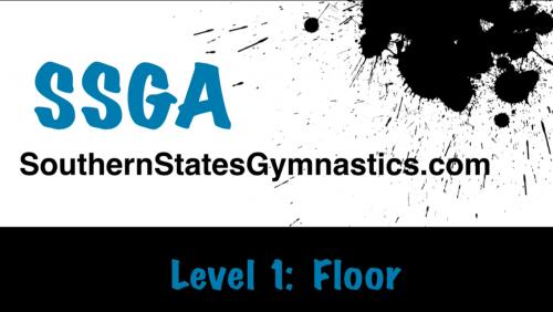 Level 1 - Floor Tutorial Picture
